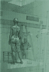 Standing Female Nude Green Paper Rear View